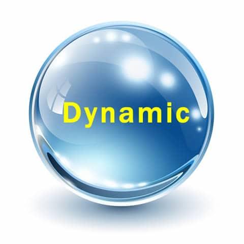 dynamic S.E.O.