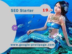 seo starter price